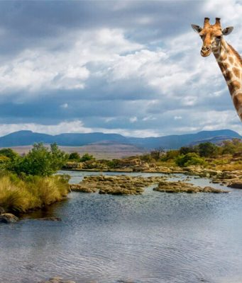 África do Sul é um dos destinos mais desejados para 2021