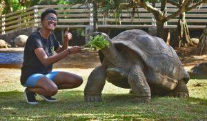 Aldabra um ecossistema protegido no Oceano Índico