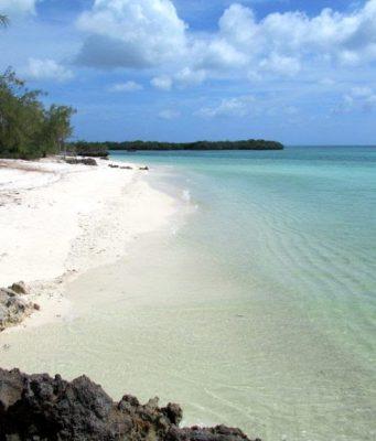 Aldabra: um ecossistema protegido no Oceano Índico