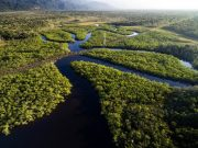 Estados do norte do Brasil se unem para criar Rotas Amazônicas Integradas
