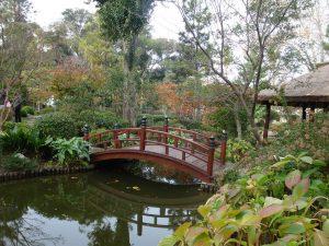 Passeios pelo Jardim Japonês são uma ótima opção