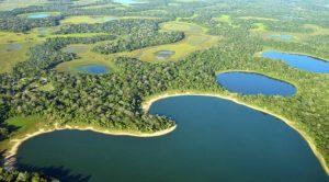 Pantanal será um dos destinos mais procurados em 2021