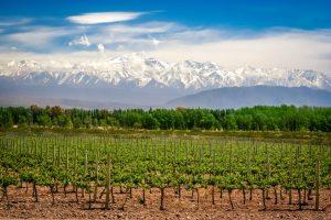 Roteiro de 7 dias para conhecer Mendoza, na Argentina
