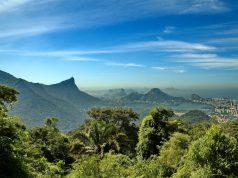 Você sabe a diferença entre Amazônia e Mata Atlântica